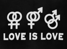 636013662722544847-697838270_love-is-love--source